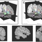 brainmodulyzer